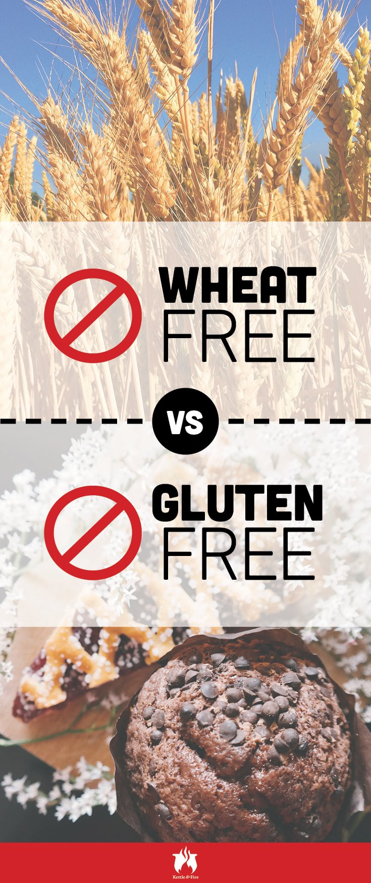 Ever confused about gluten free vs. wheat free? We've laid out the difference for you.