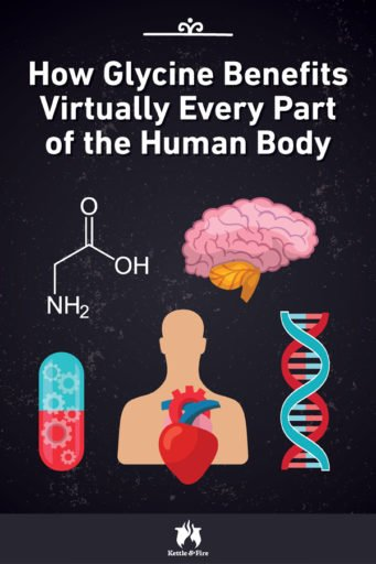 How Glycine Benefits Virtually Every Part of the Human Body